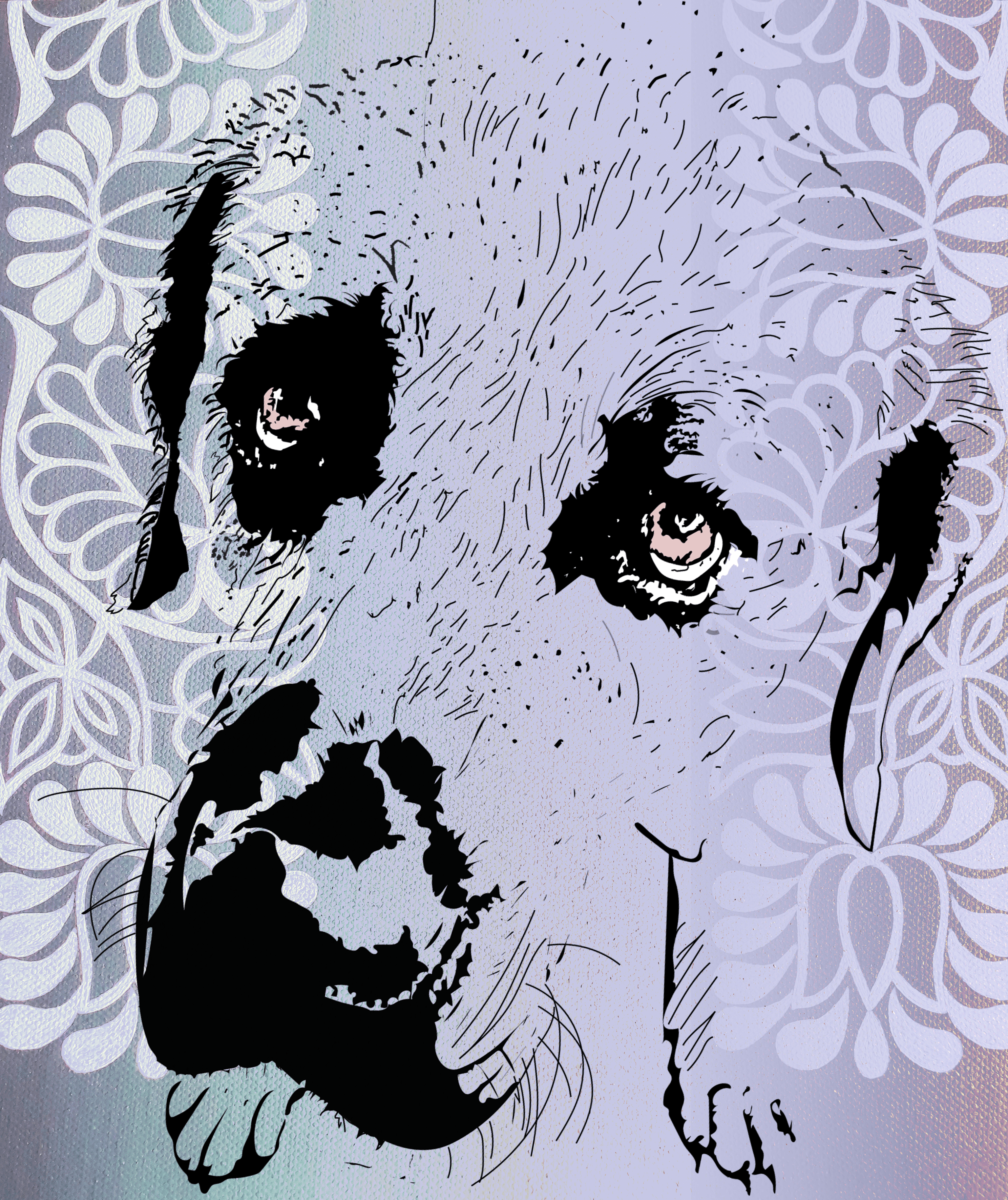 Hašiko – Portraits of the dog